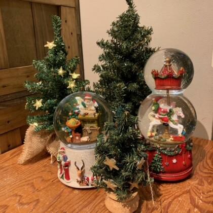 クリスマスツリーのご紹介