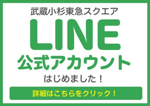 LINE公式アカウントはじめました!!